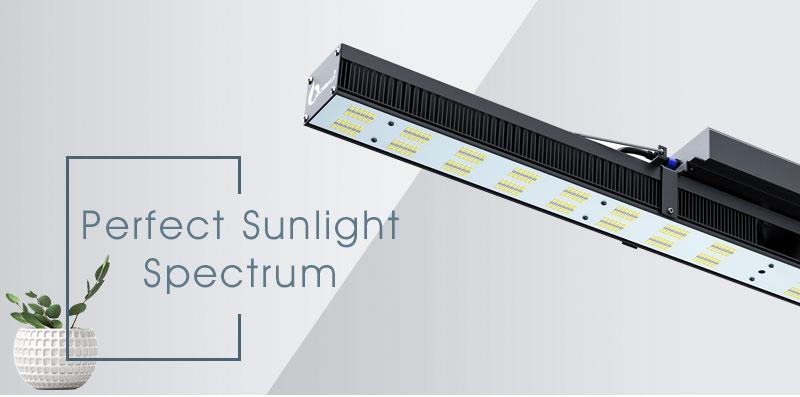 240w grow light bar (5)