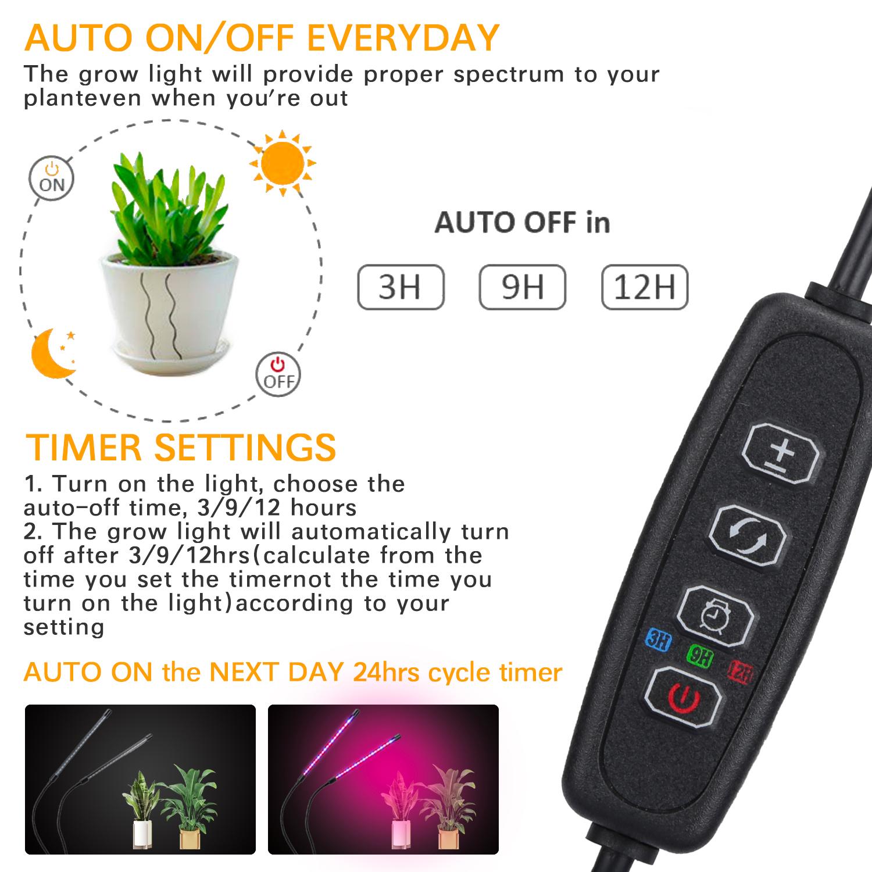 A-2020-0313-09-植物灯3